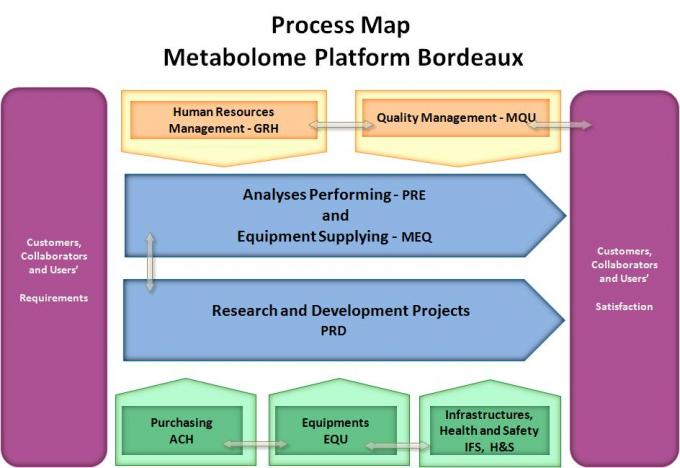 Process Map of Bordeaux Metabolome Facility